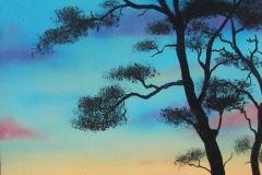 Beacon-Hill-Tree-at-Dusk