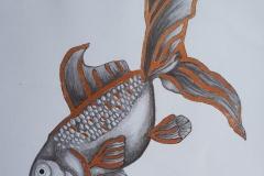 Edbas-Pencil-and-Gold-Leaf-Fantail-Fish