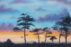 Trees-at-Dusk-2